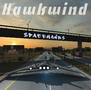 Hawkwind Spacehawks