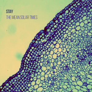 album art for The Mean Solar Times from Stay.