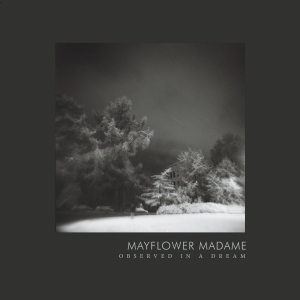 Album cover for Observed In a Dream, from Mayflower Madame.