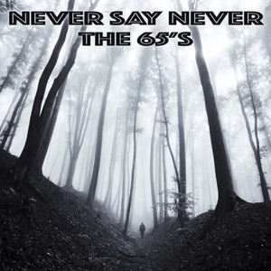 65's-Never Say Never