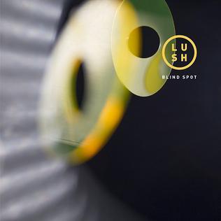 Blind Spot EP
